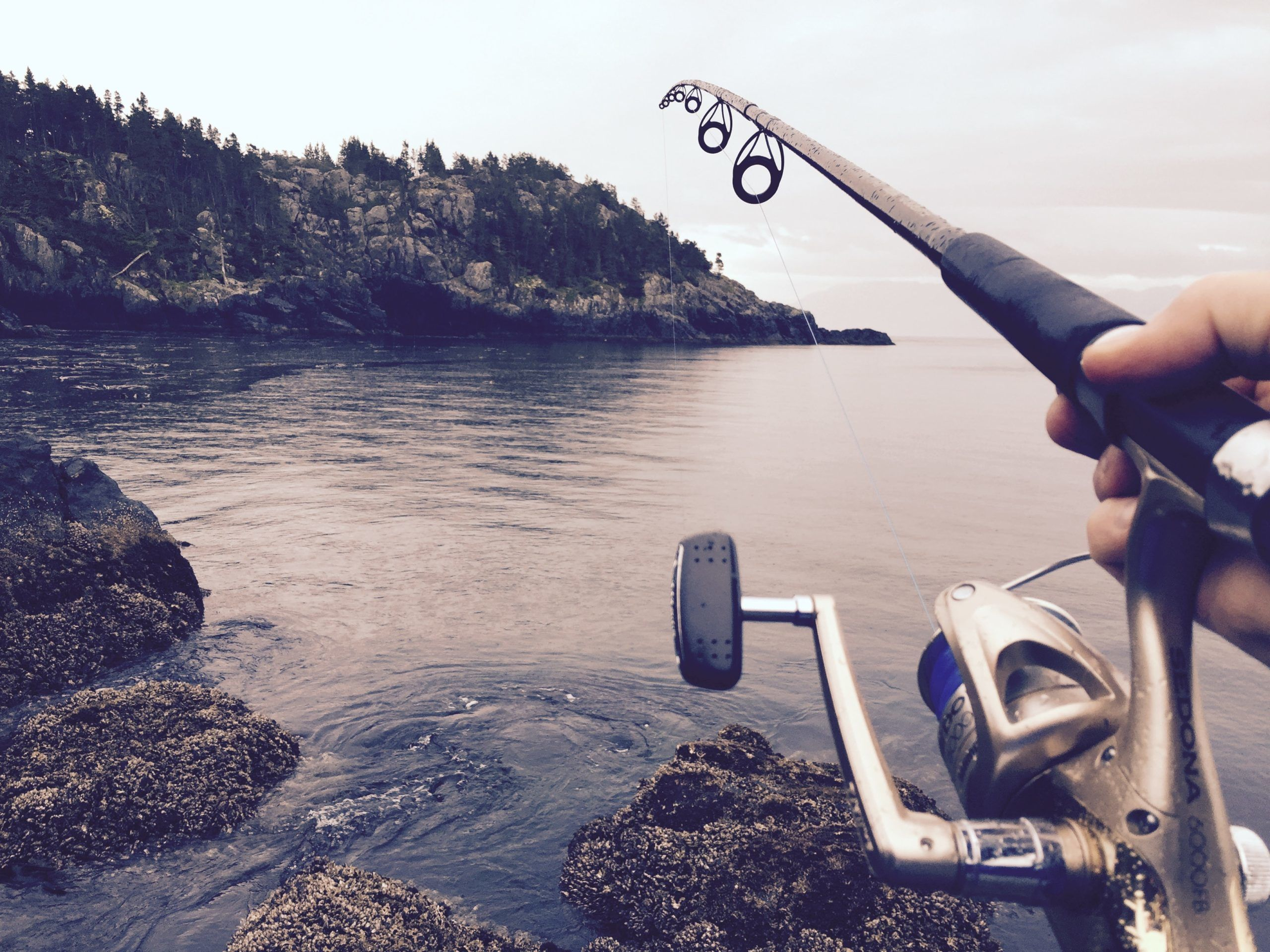 inshore fishing rod and reel for saltwater